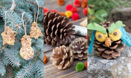 Quick and Easy Nature Crafts for Kids – Eco-Friendly Activities for Kids