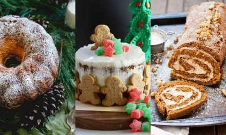 Amazing Christmas Cakes Recipes – Best Christmas Dessert Ideas!